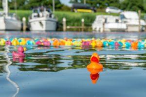Duck Race ten bate van Hospice Het Tweede Thuis, organisatie De Bongte Hongd Westerland